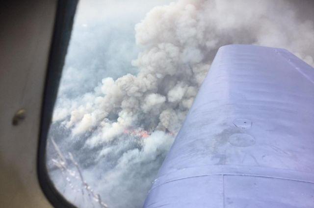 На далеком Востоке устранили три больших лесных пожара