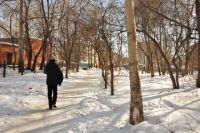 В этом году ул. Энтузиастов очистят от аварийных деревьев.