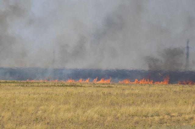 Вовласти огня: ВРостовской области объявили особый противопожарный режим