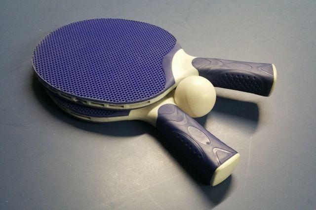 Двое вологжан стали призерами 2-х больших турниров понастольному теннису
