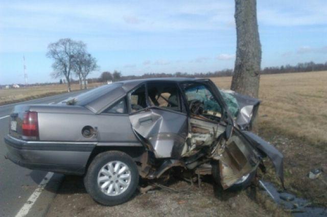 Под Калининградом неопытный водитель разбил недавно купленное авто.