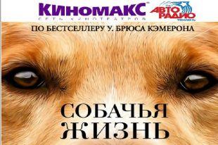 «Собачья жизнь» начнётся у тюменцев на день раньше официальной премьеры