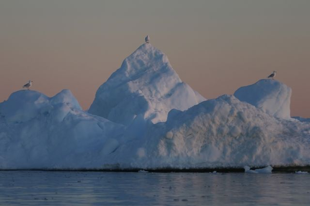 NASA показало, как тает арктический лед