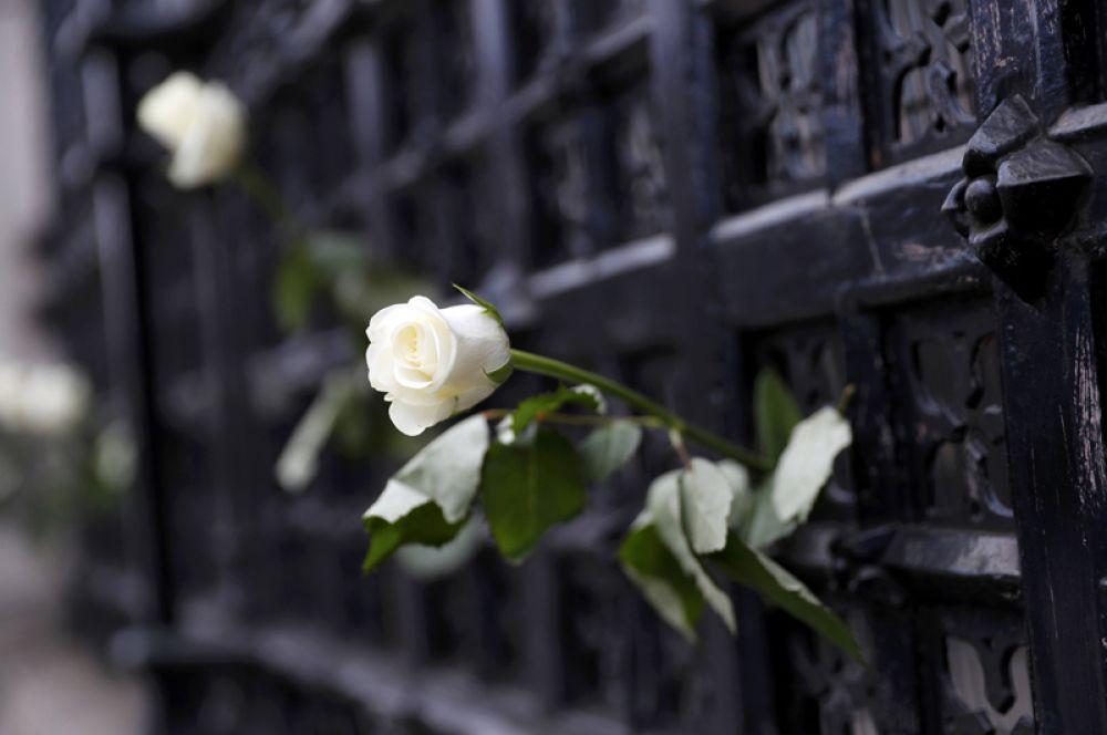 Роза в воротах британского парламента.