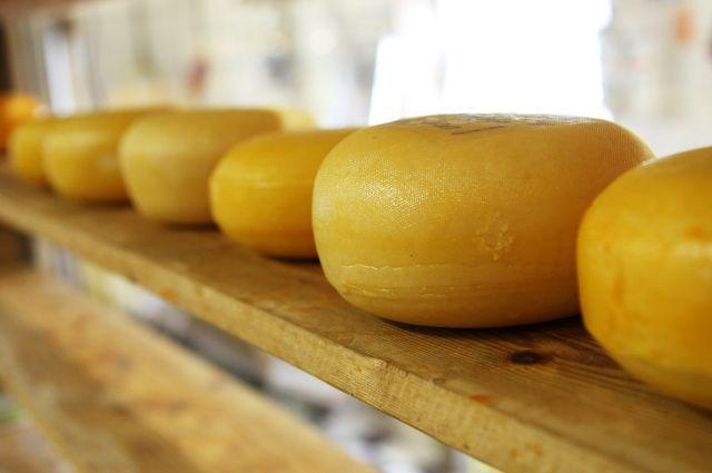 Россия запретила импорт пяти марок сыра из Белоруссии
