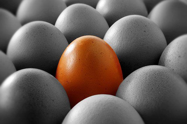 Какие куриные яйца полезней: большие или маленькие?