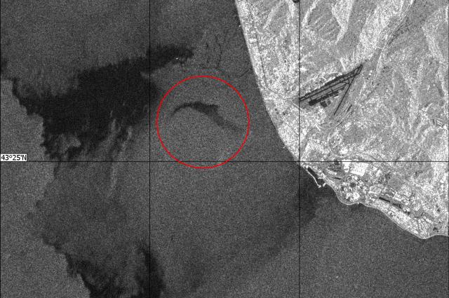 Пилот Ту-154 находился в «иллюзорном состоянии» перед крушением — СМИ