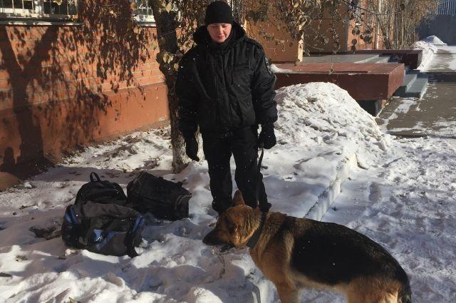 ВУсолье-Сибирском обезвредили боевую гранату, найденную около кафе