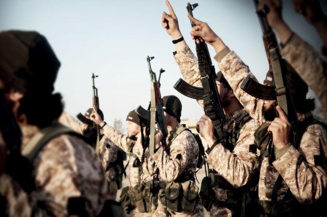 Вкабмине посоветовали ужесточить ответственность завербовку втеррористы