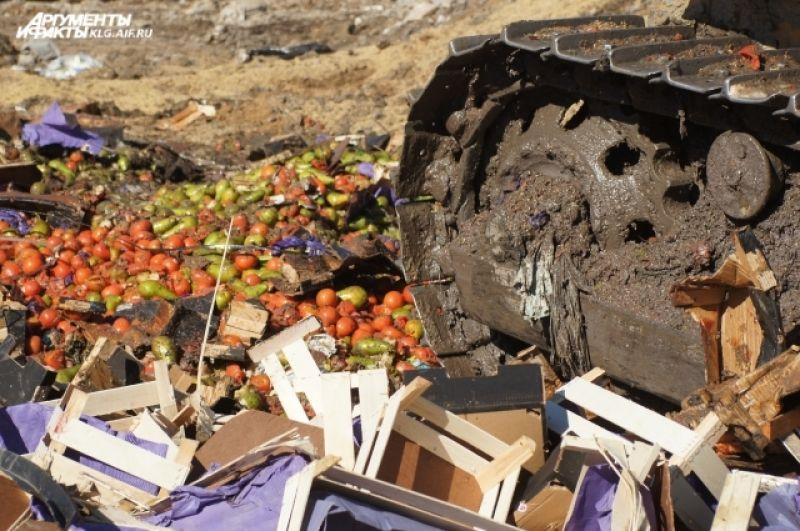 Если попытаетесь провезти более 5 кг продуктов, вас ждет штраф. За овощи и фрукты — до 500 рублей, за мясо и молоко — до 1000 рублей.