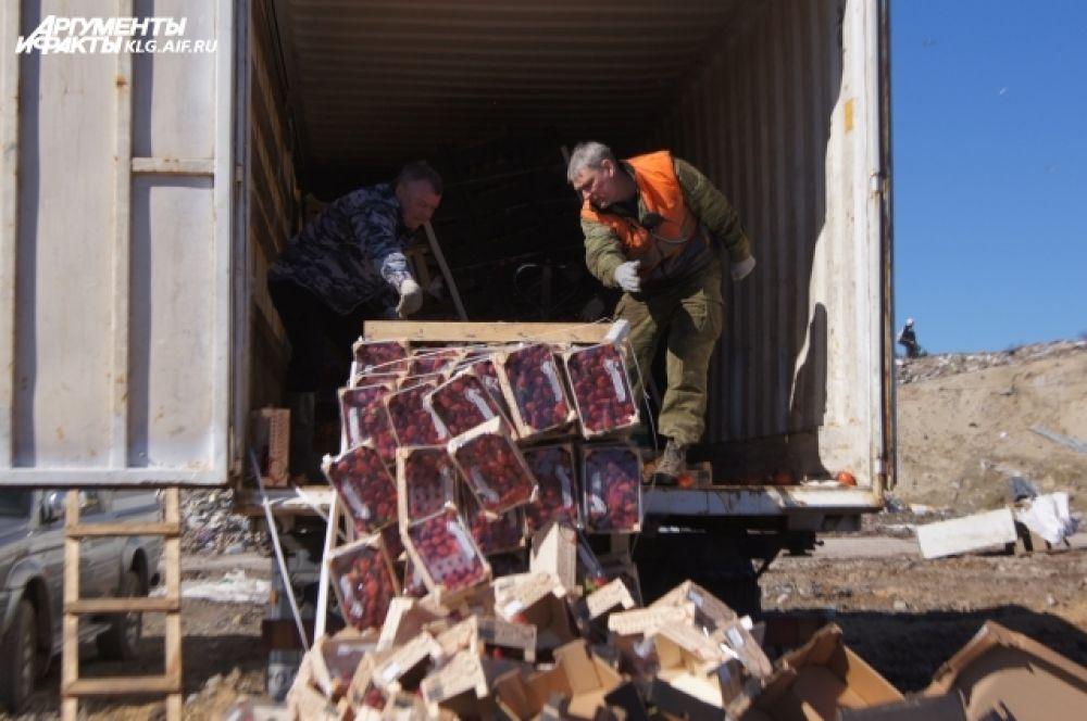 Процесс уничтожения сотрудники Россельхознадзора снимают на видео.