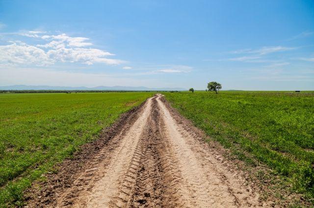 Наполучение «дальневосточного» гектара подали уже 77,5 тыс. заявок