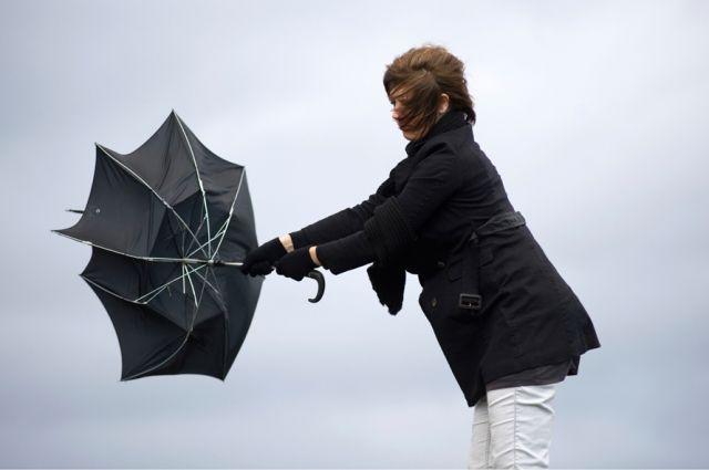 Синоптики предупреждают осильном ветре вКиеве 27марта