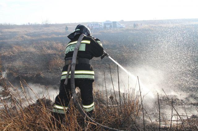 В Правдинске из-за поджога сухой травы сгорел ангар с древесиной.