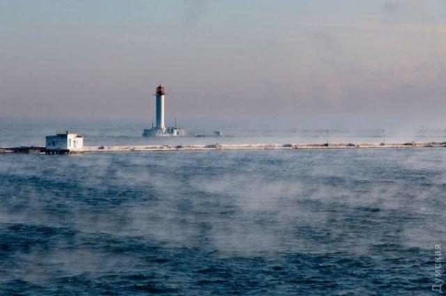 В Украину вернулись 14 моряков, брошенных судовладельцем в Венесуэле