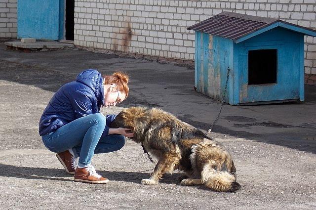 Ветврач Нина Лобанова с Никой.