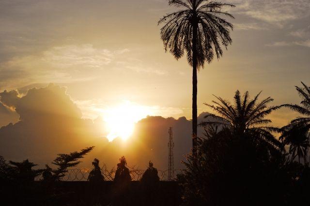 В Нигерии из-за вспышки менингита умерли не менее 140 человек