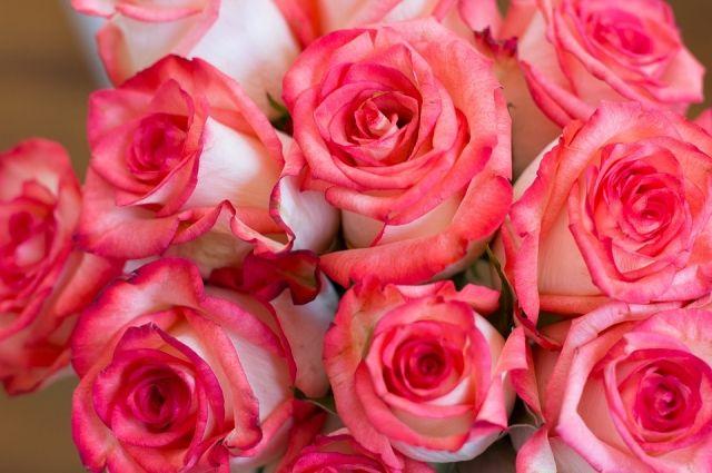 Кража произошла в одном из цветочных павильонов