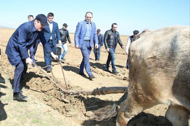 Руководитель Дагестана посетил выставку кайтагской вышивки вселе Маджалис