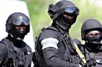 Задержаны три участника организации, в том числе один из ее руководителей.