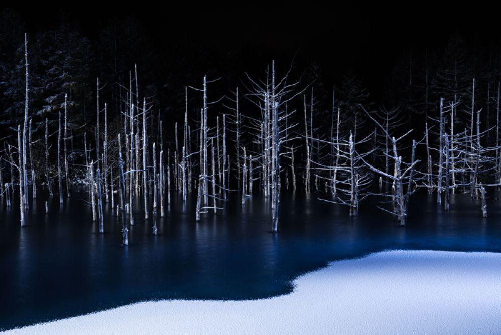 1 место в категории «Природа». Снимок под названием «Граница».