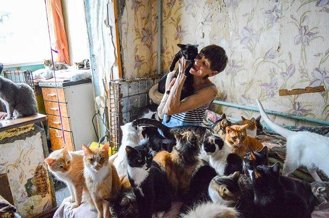 Через руки Марины прошли тысячи кошек