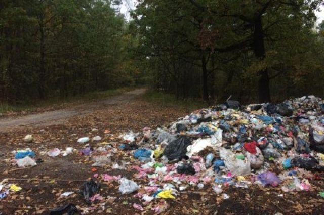 Отправлять мусор обратно к Львову не собираются, но счет мэру Львова выставят