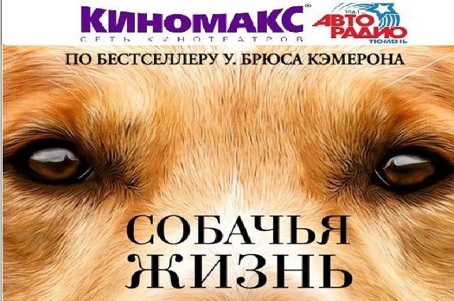 Тюменцы посмотрели «Собачью жизнь» до официальной премьеры