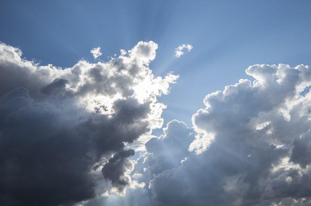 25% граждан России верят, что Солнце вращается вокруг Земли— руководитель ВЦИОМ