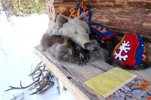 Для некоторых народов медведь - священное животное.