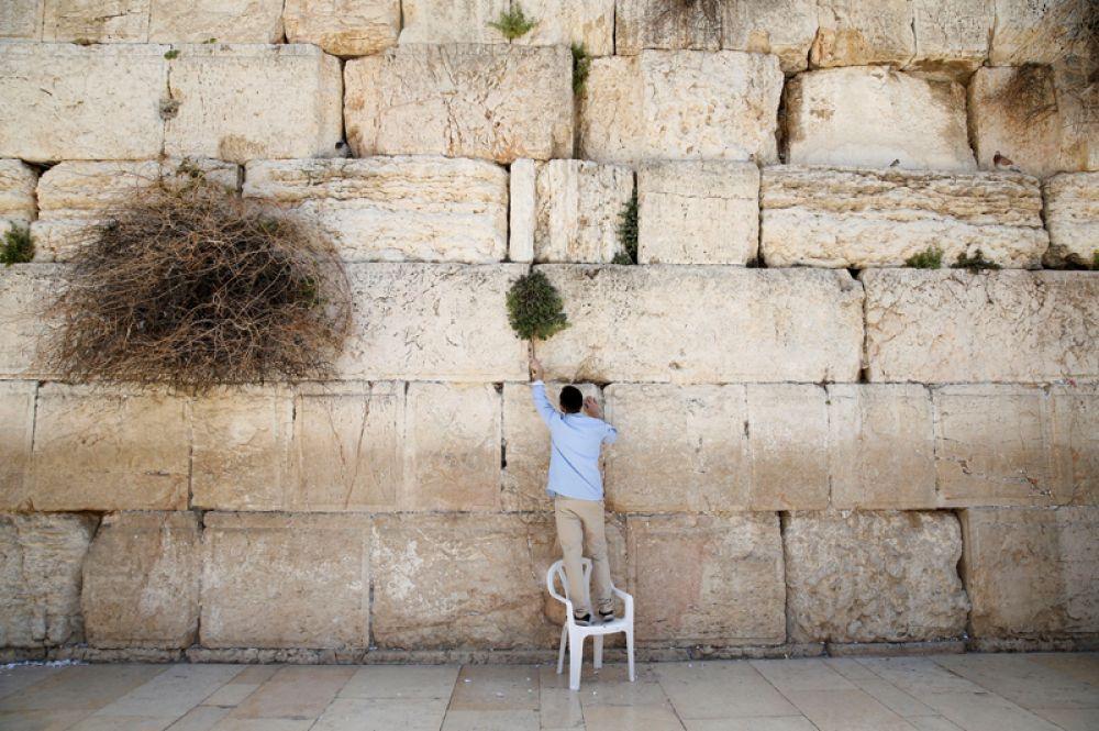 29 марта. Перед еврейским праздником Пасхи из Стены Плача в Старом городе Иерусалима убирают старые записки, чтобы освободить место для новых.