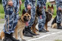 Полицейские из 12 областей Украины вместе со служебными собаками прибыли в кинологический центр полиции Киевской обл.