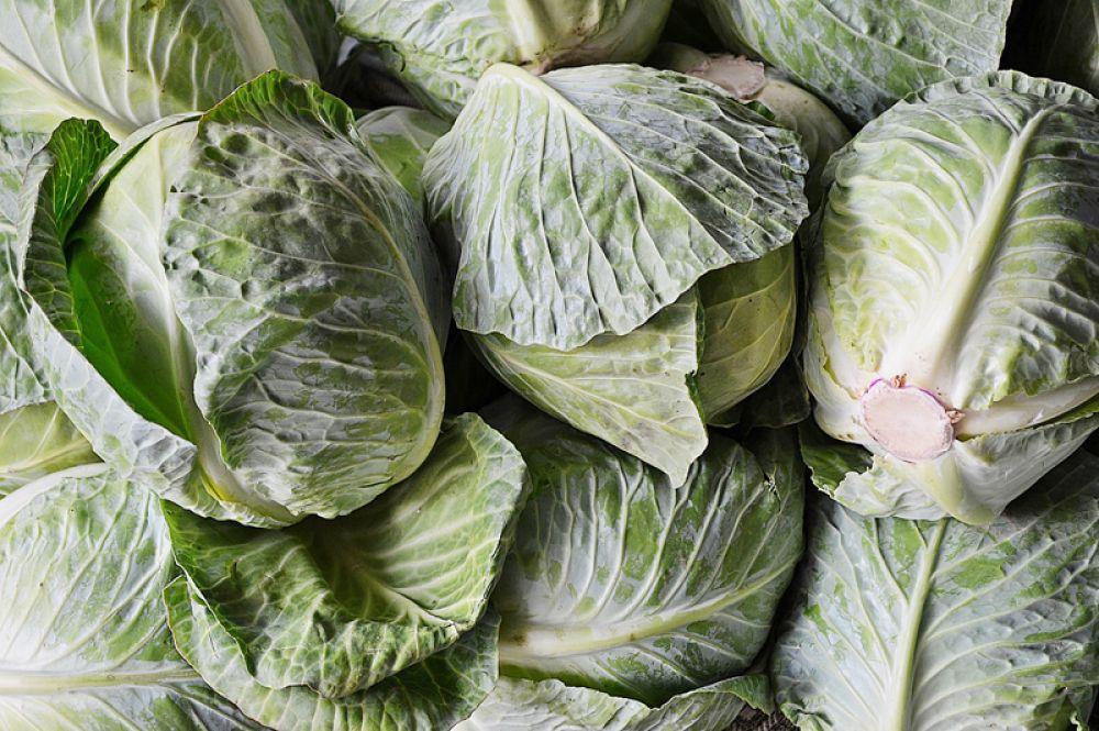 Молодая капуста. Наконец-то, молодая и импортная, разумеется, капуста появилась в наших супермаркетах. Она очень полезна, в ней содержатся витамины группы B, витамин С. Отличительной ее особенностью является содержание так называемого витамина U — метилметионина. Он способствует улучшению состояния организма при гастритах и многих других заболеваниях желудочно-кишечного тракта. К тому же капуста стимулирует обменные процессы, обладает противовоспалительным и обезболивающим действием, а содержащиеся в ней пищевые волокна способствуют выведению холестерина.
