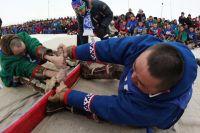 День оленевода отмечают приуральцы, тазовчане и ямальцы.