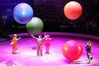 Пермскому цирку требуется ремонт.