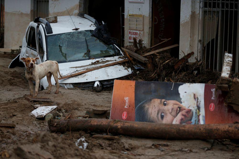 Разрушенные улицы в городе Мокоа.