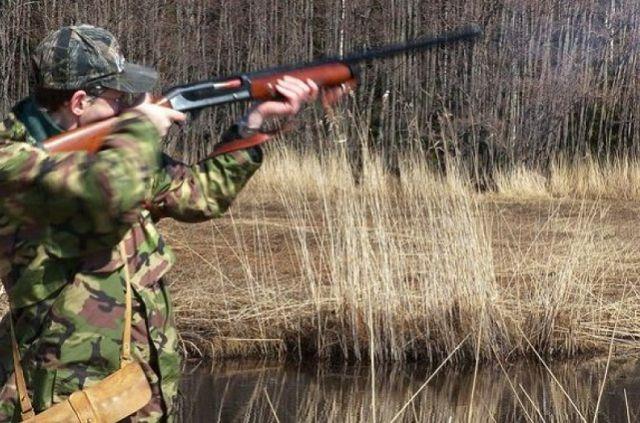 Для охоты в общедоступных угодьях необходимо иметь разрешение.