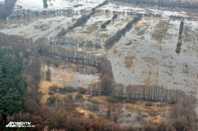В Калининградской области сосредоточено 70% польдерных земель в России.
