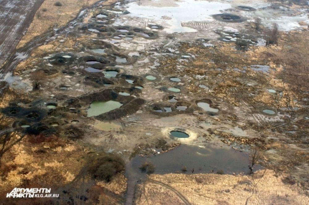 Зеленоградский район. Такие «лунные кратеры» оставляют после себя нелегальные копатели янтаря. Ущерб для природы - колоссальный.