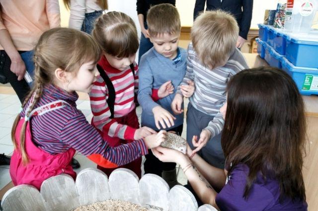 Воспитанники подшефного детского сада № 1 сдали свыше 100 кг использованных батареек. Дети хотят, чтобы ёжики жили.