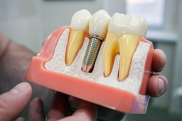 Надымские школьники побывали на экскурсии в стоматологии.