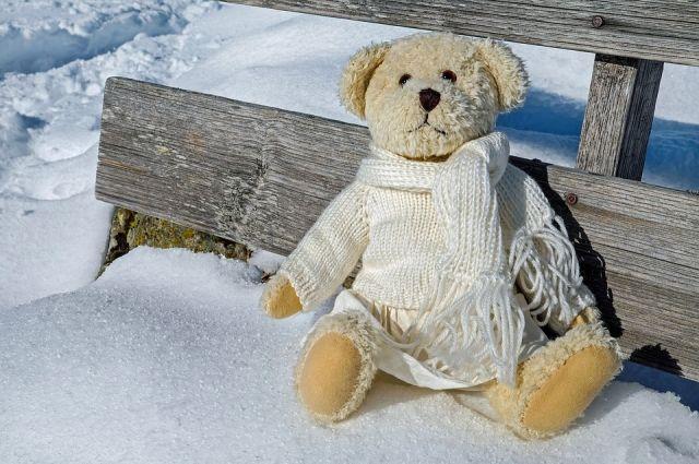 При проверке пакета оказалось, что в нём лежала мягкая игрушка – медвежонок.