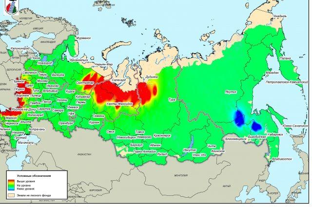 ВОренбуржье спрогнозировали пик лесных пожаров