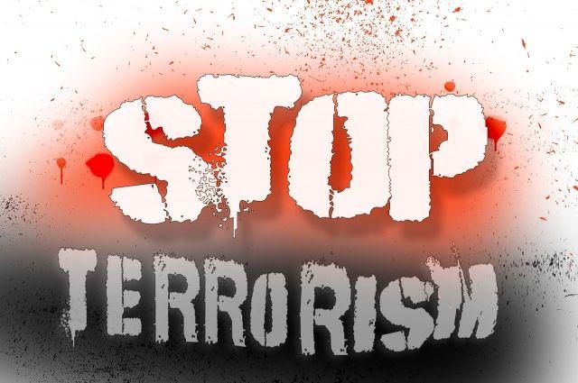 «Питер, мысвами»: вТуле прошел митинг против терроризма