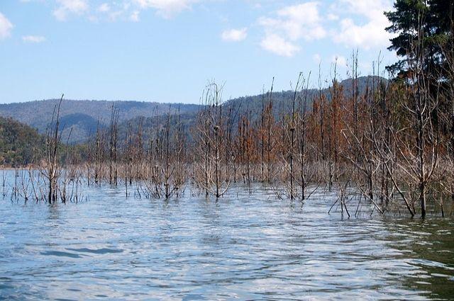 Три десятка частных домов вРубцовске оказались подтоплены из-за паводка