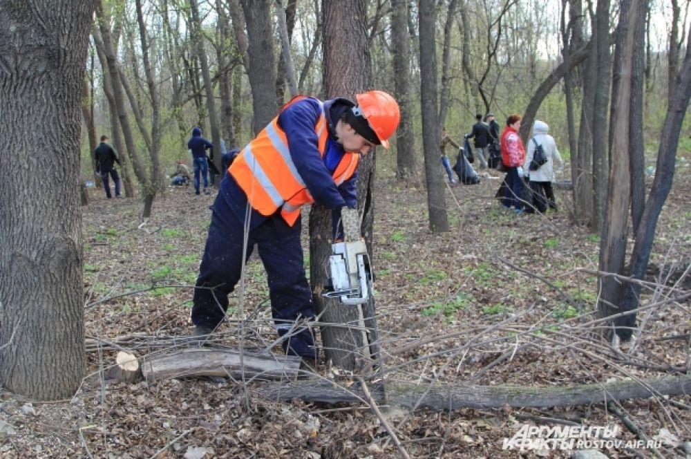Добровольцам помогали рабочие из специализированных служб ЖКХ города.