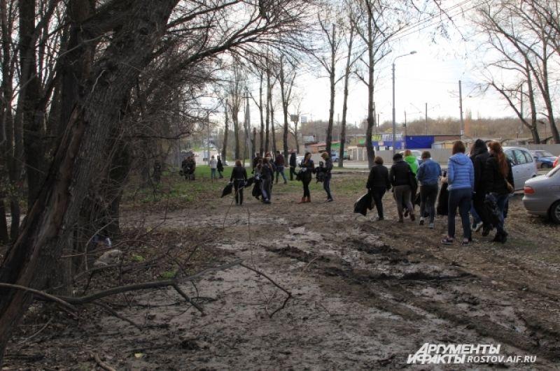 Волонтеры убирали от мусора лесополосу.