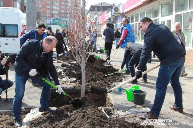8 апреля в городах Ростовской области состоялся субботник.