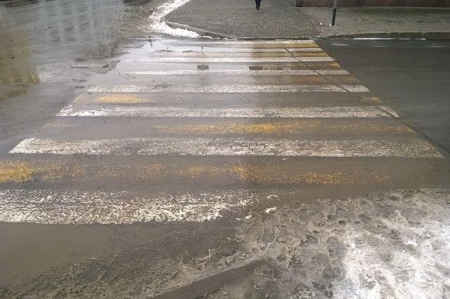 Омских пешеходов призывают к дисциплине.