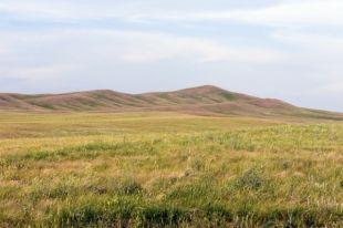 Оренбургская степь прекрасна в любое время года.